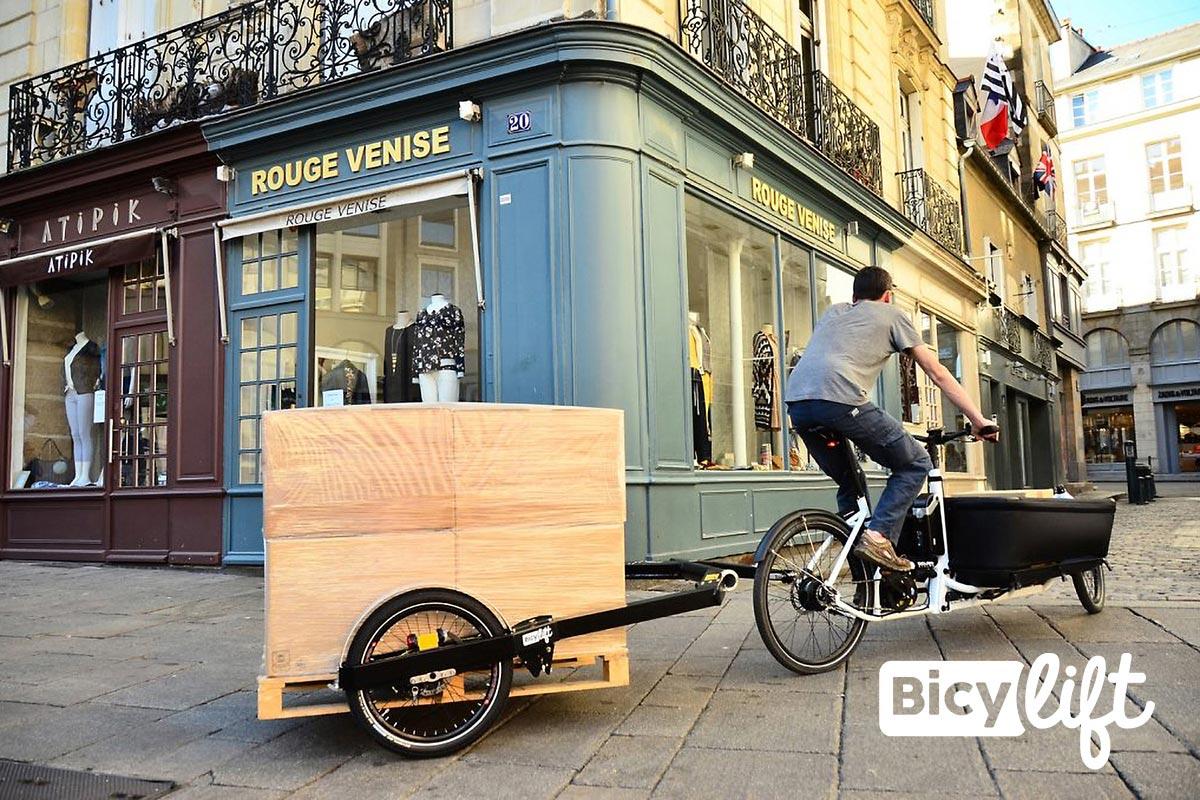 Bicylift Cargo Trailer für Europaletten