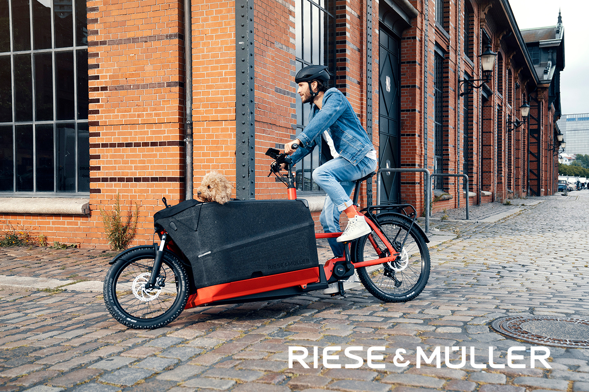 Riese Müller 2021 Packster 70